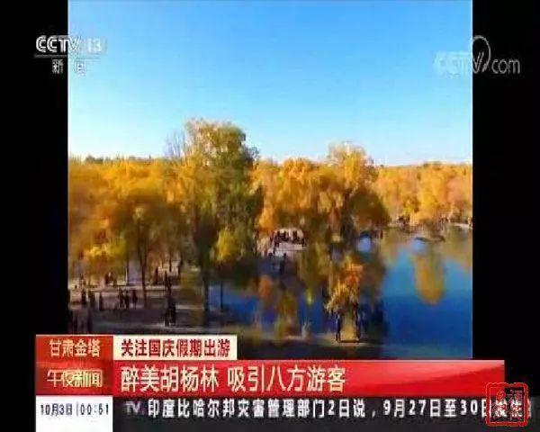 央视连续聚焦金塔沙漠胡杨林景区,你去了吗?