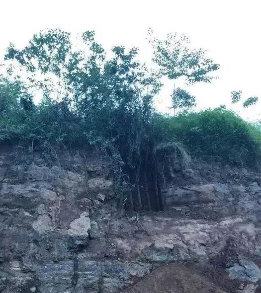 宜宾惊现古墓群,挖开的古墓似乎里面还有…