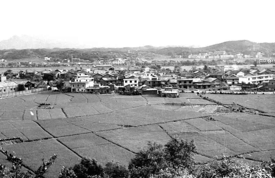 萍�l�v史上的三座古城