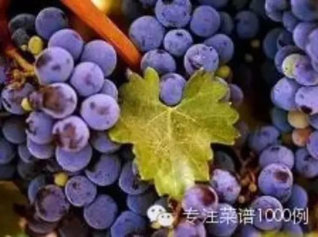 吃葡萄的季�!教你如何巧洗葡萄~必�洌。�