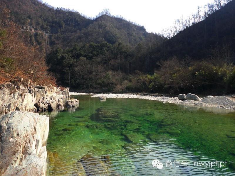 【五阳专辑】王瑞玉:青山绿水五阳路
