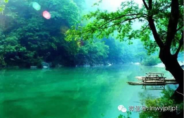 【陇南诗歌】赵本余:如果家住梅园(组诗)