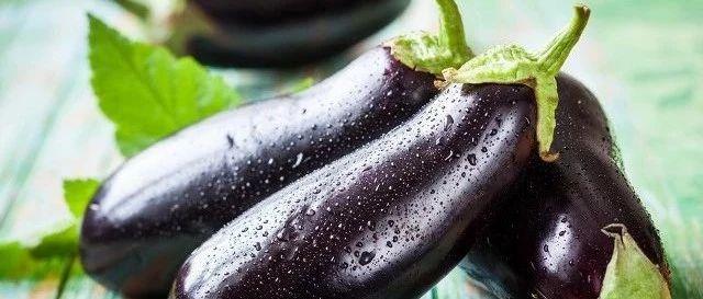 茄子千万不能和它一起吃,毒性很大?其实真正有毒的是…