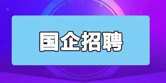 宝丰县2019年公开招聘国有公司高管人员补充公告