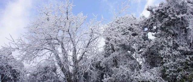 下雪了!桂林下雪了!多图+视频带你看遍桂林2018年冬天第一场雪