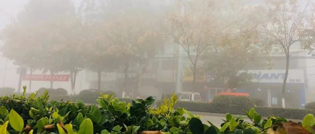 嘉祥大雾,刷爆朋友圈,求老司机带带路…