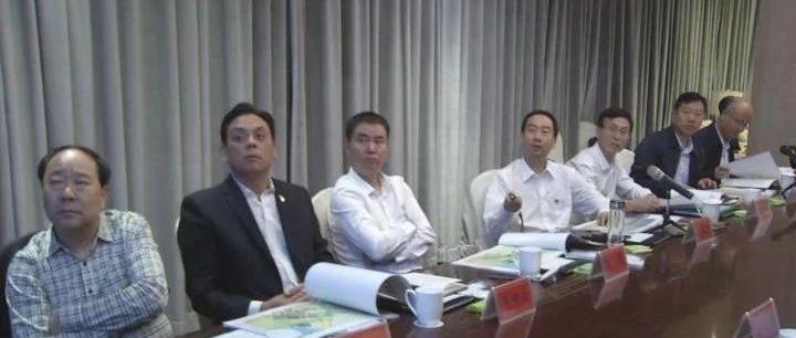 三洋铁路汝州南站片区控制性详细规划及城市设计汇报会召开!