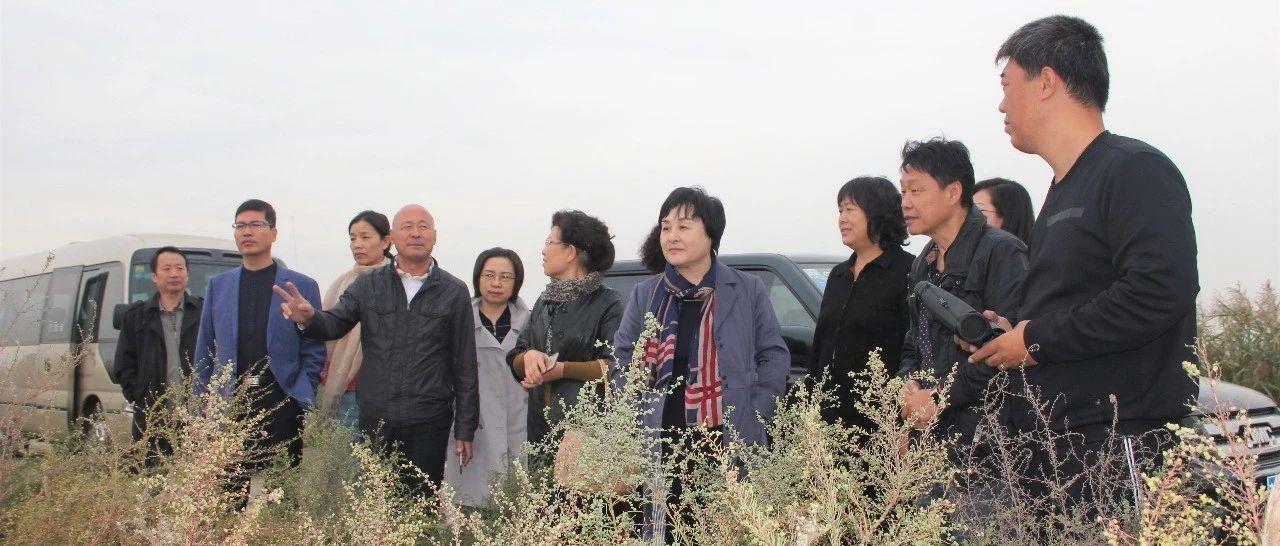 滨海新区政协委员视察北大港湿地自然保护区