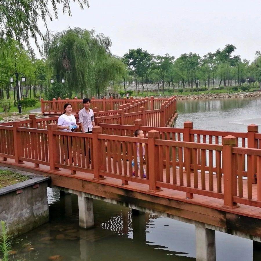 实拍|夏季雨后初晴的滨江公园,温馨又有爱...