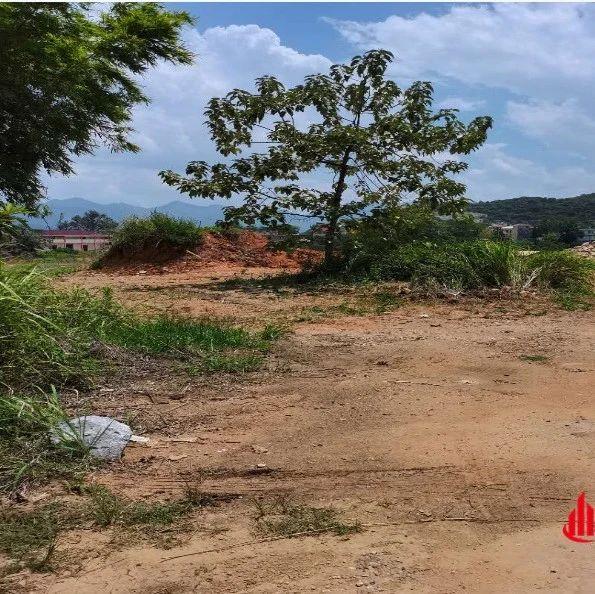 这个公司以成交总价1318.5万元竞得于都县禾丰镇两个地块。