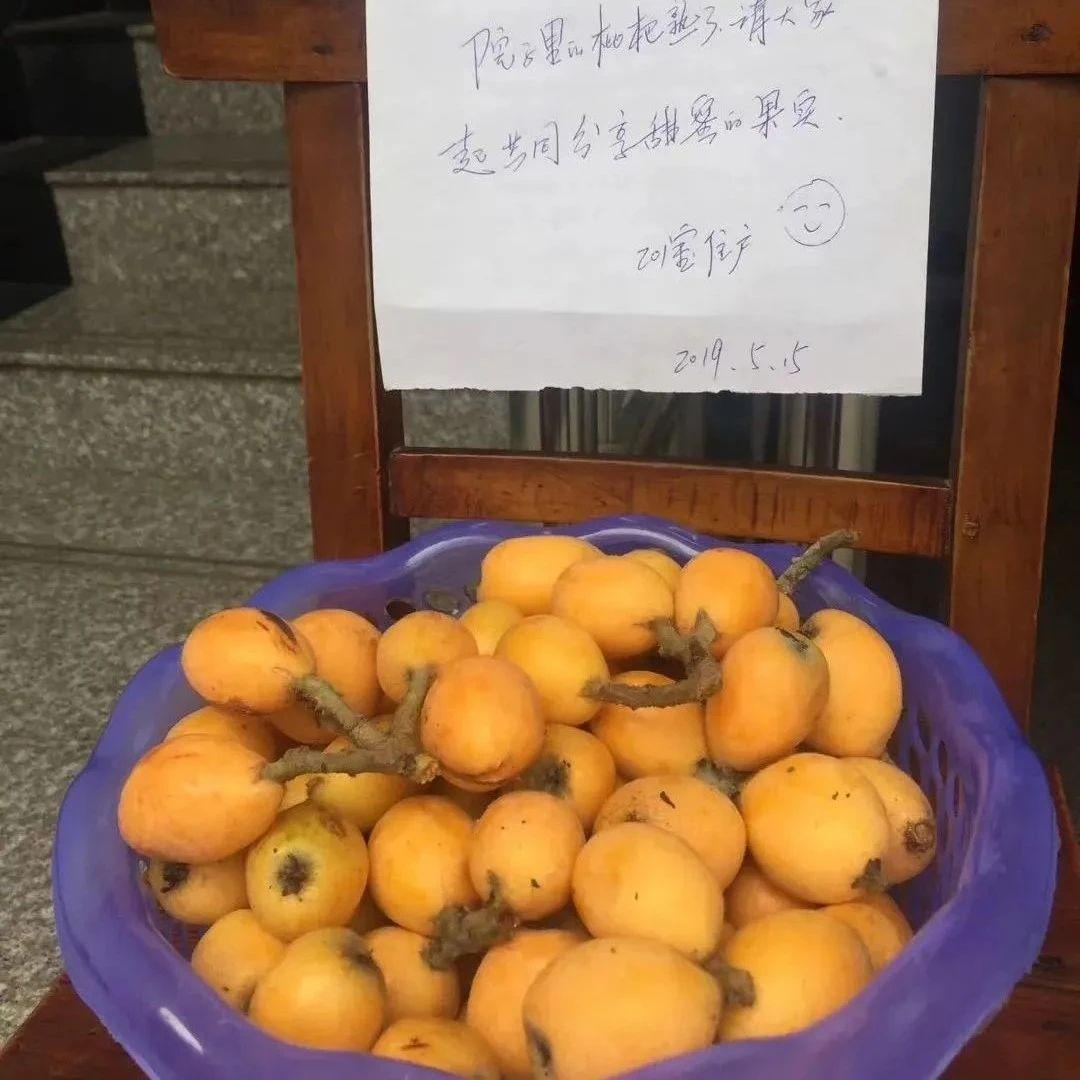 太幸福!丽水这个小区果蔬免费拿!