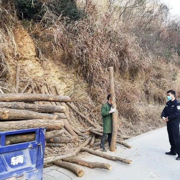 梅山派出所民警查获一起私自盗伐林木案件