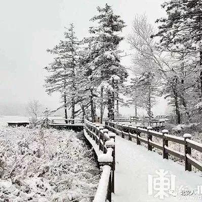 黑龙江下雪啦!好美,一山看四季景观