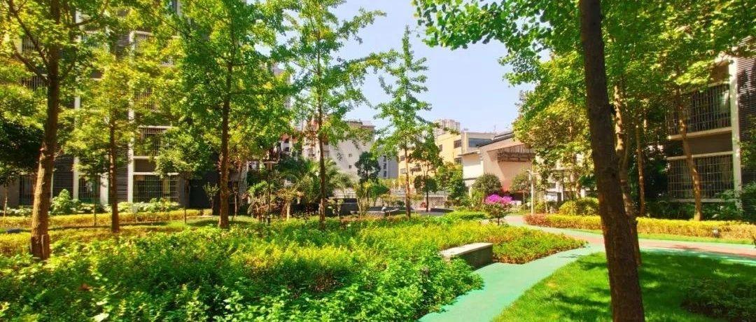 大城小院,位于五星大道,做大足人的�剀凹�@!
