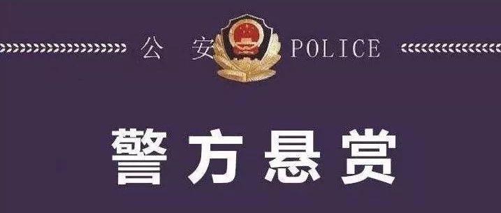 【悬赏通告】警方悬红十万