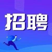 滨海新区发改委公开招聘!