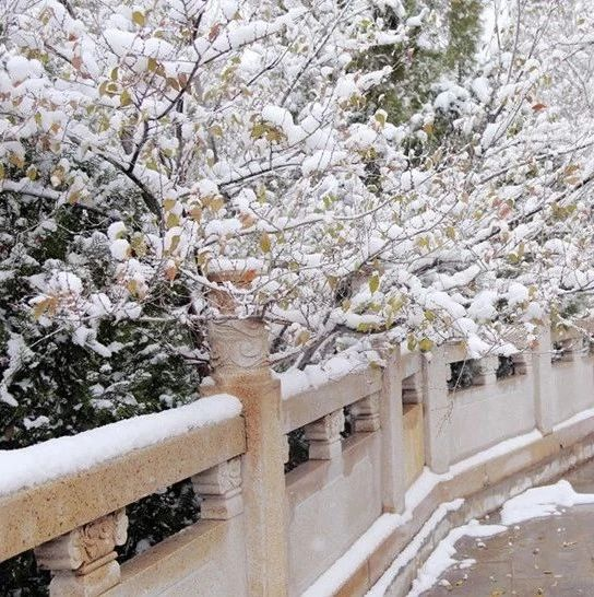 甘肃省全力应对冰雪天气保交通畅通
