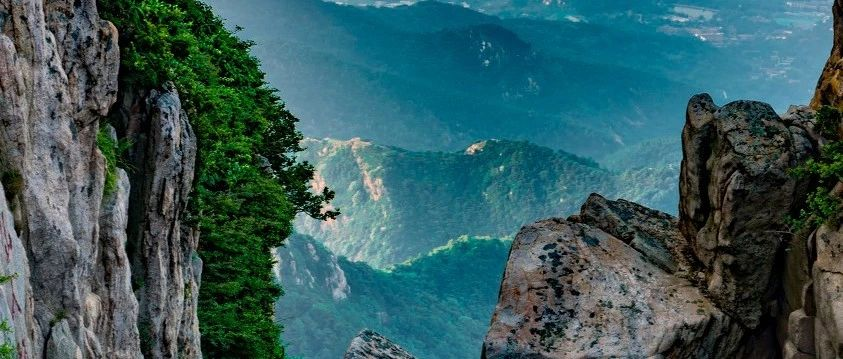 有一种枉来人间,叫做你没爬过泰山!