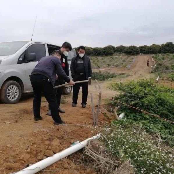 好消息!吴川两村之间长达十余年的岭界纠纷,得到化解...