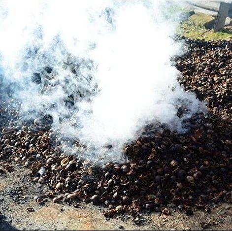 木籽烟火里的腊肉