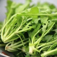 【健康】�@5�N食物是眼睛保�o神,眼睛疲�凇⒏��就吃它��