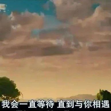 【城缘】90年成熟稳重小哥哥、恋爱课堂之如果你想结婚了...