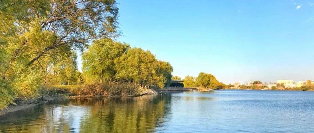 双洎河国家湿地公园迎来踏青采风最美季