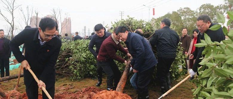 永丰县开展2019年新春义务植树活动