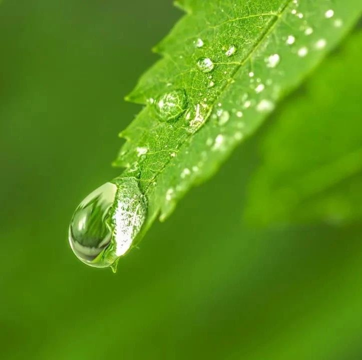 下雨+降�赜�砝�