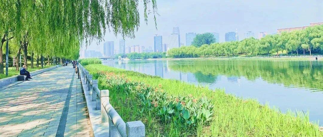 郑州这条河,获国家级奖项!