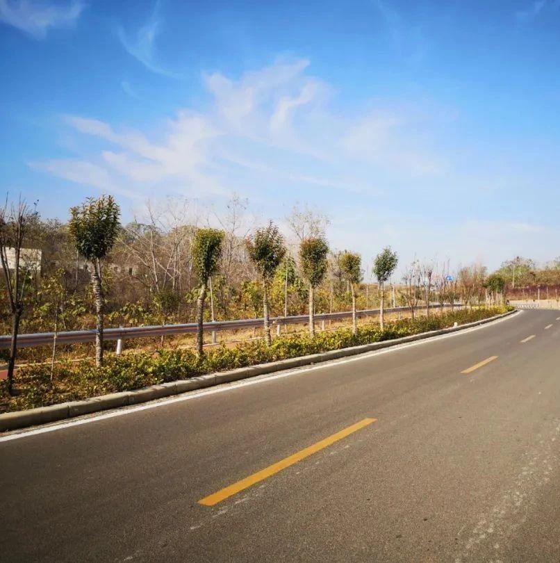 长葛周边的这几条网红公路,你走过几条?