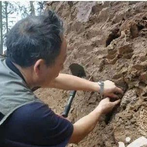 宜宾一农民修房子,竟然挖到直径1米的…看了让人头皮发麻!