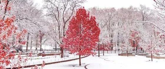 寒冬送�嘏�救助暖人心