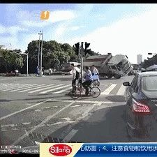 视频|躲避闯红灯电瓶车,致1死3伤