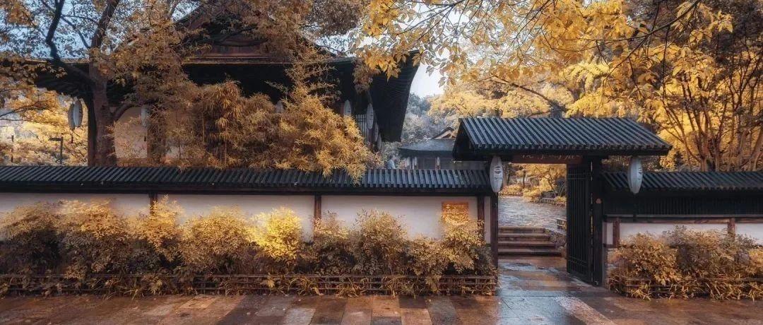 朗诵版・遇见秋景之美・摄影集萃