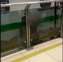 突发!上海地铁,一人死亡