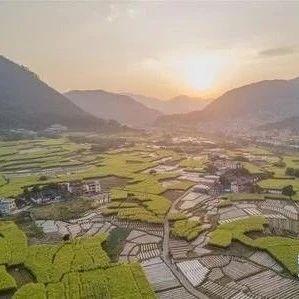 恭喜!福建下达2亿搞振兴乡村,永春这些村共分到447.43万元!