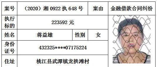 桃江县人民法院2020年第九期失信被执行人名单公布