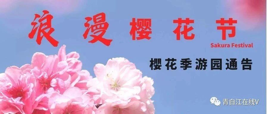 【樱花季・游园公告】关于2020年凤凰湖樱花季预约入园的通知!