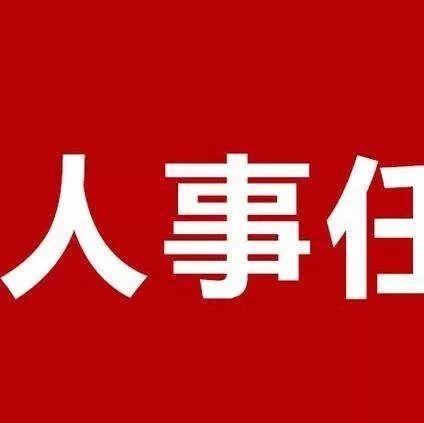萍�l市政府任免一批�h�干部(最新)