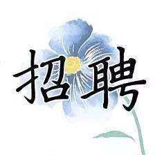 """洛阳高新区要招录教师!""""三支一扶""""也开始招募,大专可报"""
