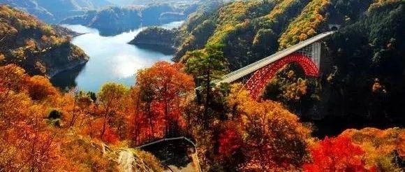 桂林这片香山同款的红枫林,值得你周末从被窝里出来