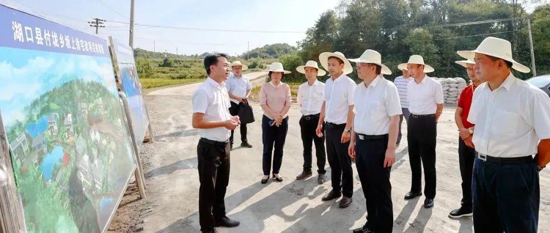 胡强在湖口县调研现代农业和宅改试点工作