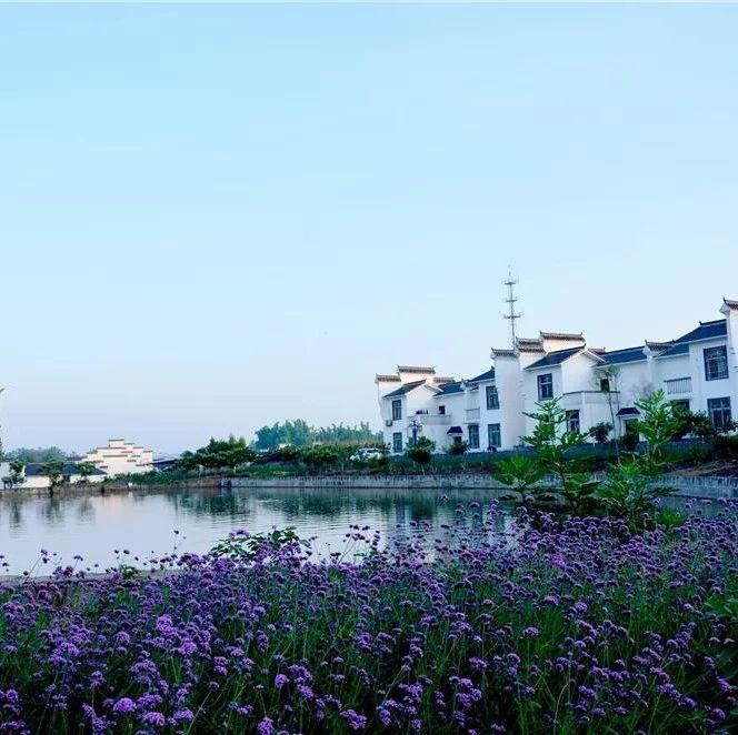 内江有个长达20公里的乡村旅游大环线(附精品线路、攻略)
