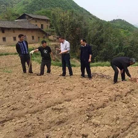 以物抵债!福彩3d胆码预测这位贫困户用2.5吨肥料还清欠款!