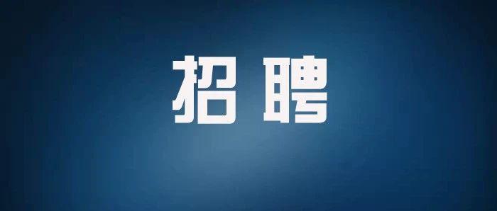 大悟公开招聘141名教师(附岗位及职数表)