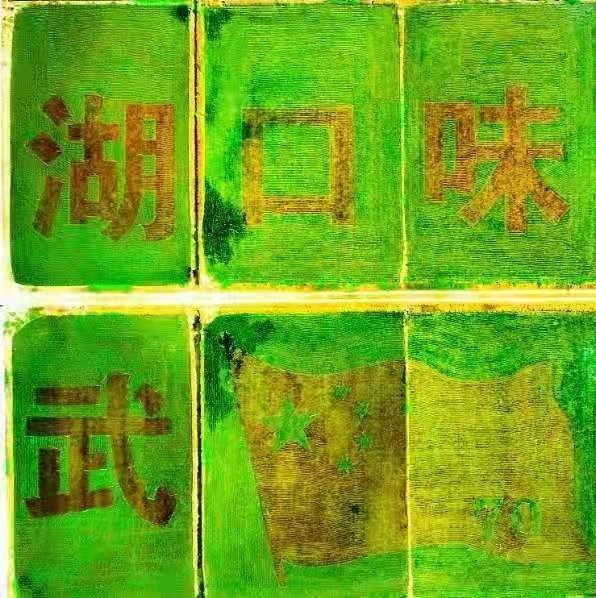 快����^!湖口�@里�N出大型彩色水稻��,太美了一定要去看!