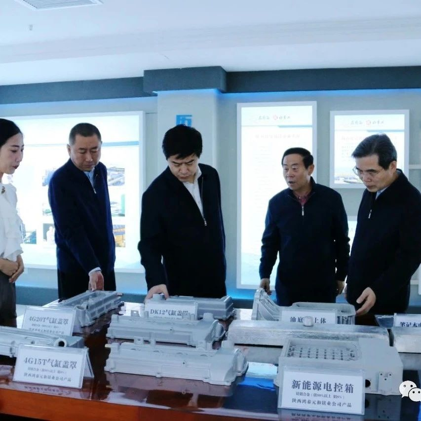 中国有色金属工业协会镁业分会会长林如海来府调研金属镁产业发展情况