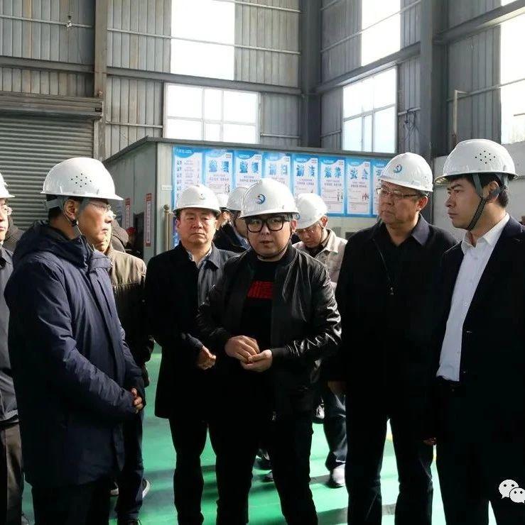 宝钢金属有限公司考察团来府考察金属镁产业发展情况