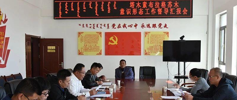 杨少春在塔木素布拉格苏木专项督查调研意识形态工作责任制落实情况